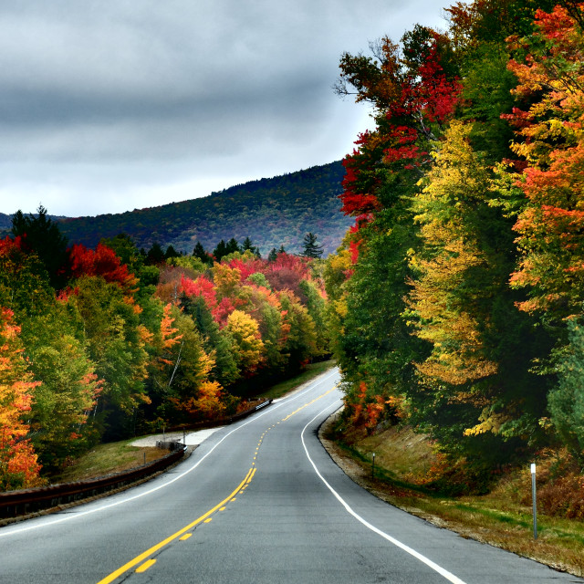 """Fall Road Trip"" stock image"
