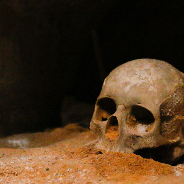 """""""Cartagenian Skull"""" stock image"""