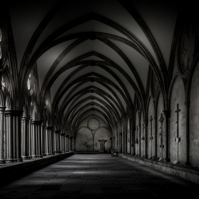 """Salisbury Cathedral Cloisters"" stock image"