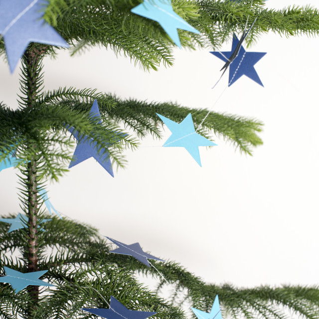 """Star decorated natural pine Christmas tree"" stock image"