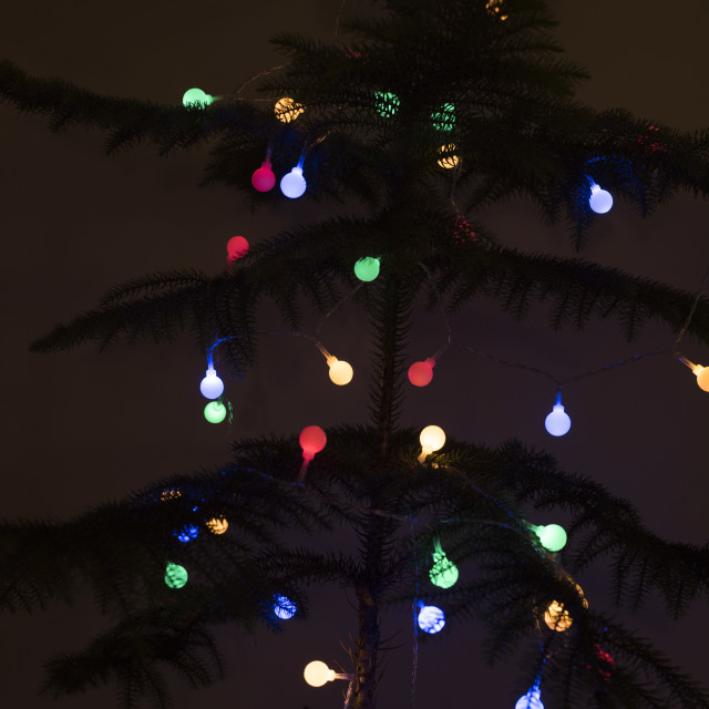 """Colorful Christmas lights shining in the darkness"" stock image"