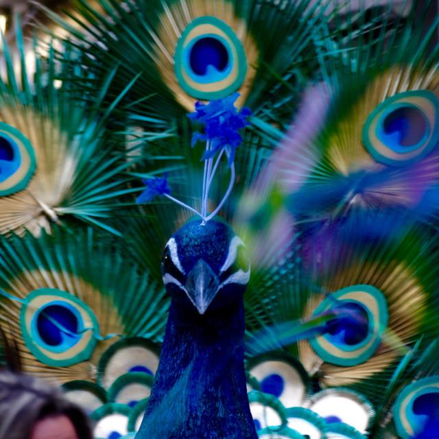 """""""Καρναβάλι, Carnival, Carnevale"""" stock image"""