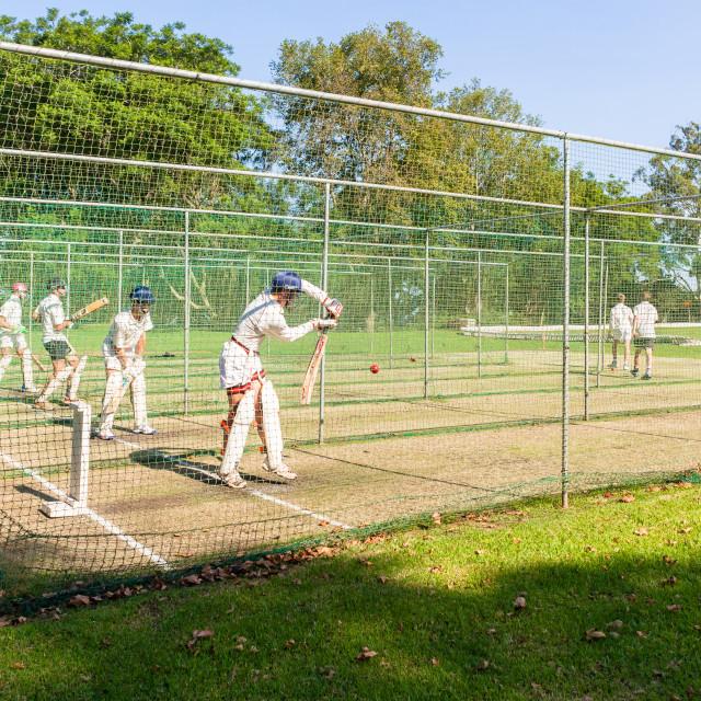 """""""Cricket Batsmen Practice Netts"""" stock image"""