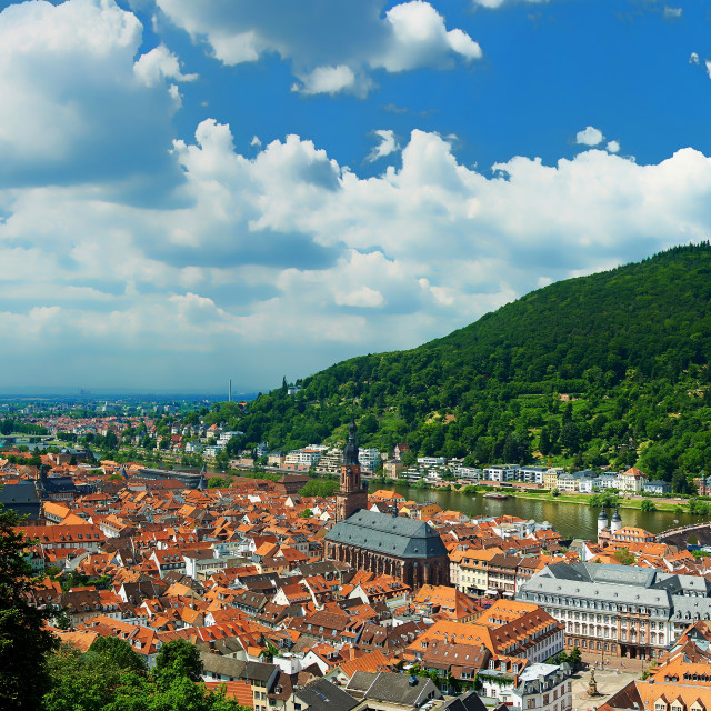 """Heidelberg panoramic view on cityscape"" stock image"