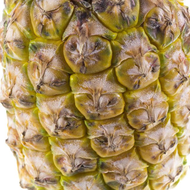 """Pineapple Tropical Fruit"" stock image"