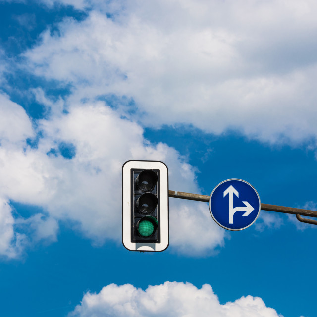 """Traffic light and road sign"" stock image"