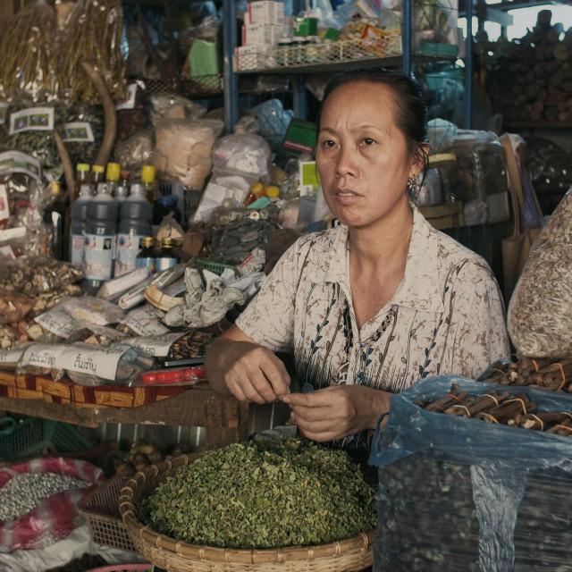 """Laotian Herb seller"" stock image"