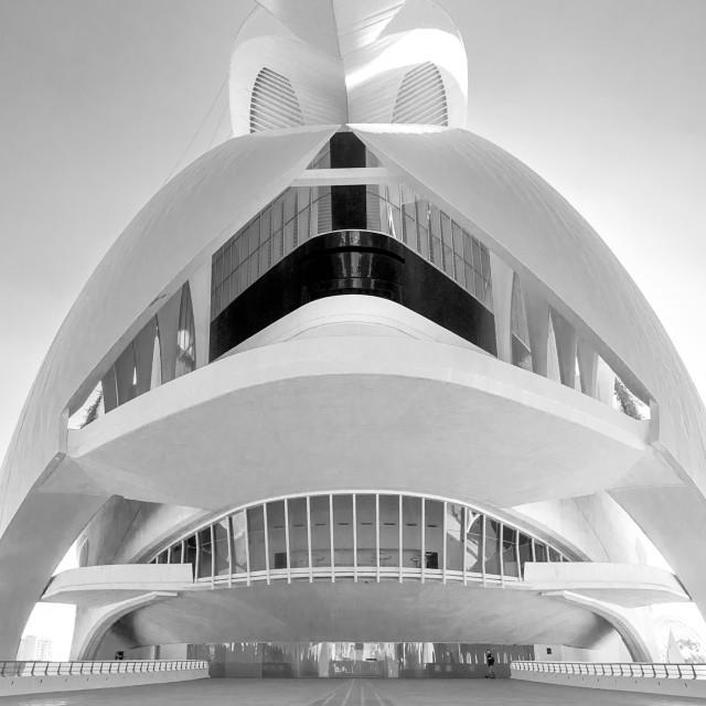 """Palau de les Arts Reina Sofia"" stock image"