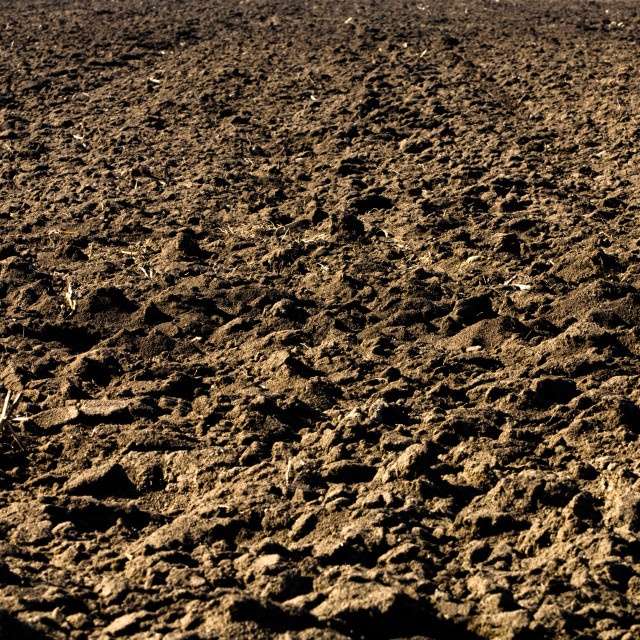 """""""Ploughed soil in agricultural field arable land"""" stock image"""