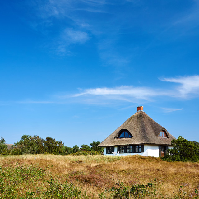 """reed house on isle of Hiddensee"" stock image"