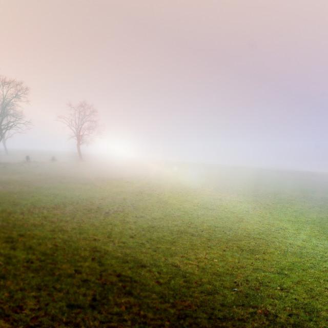 """Sunrise on the farm"" stock image"