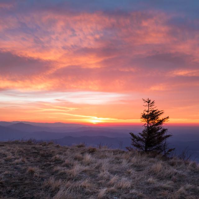 """""""Sunrise at Cozia Mountains"""" stock image"""