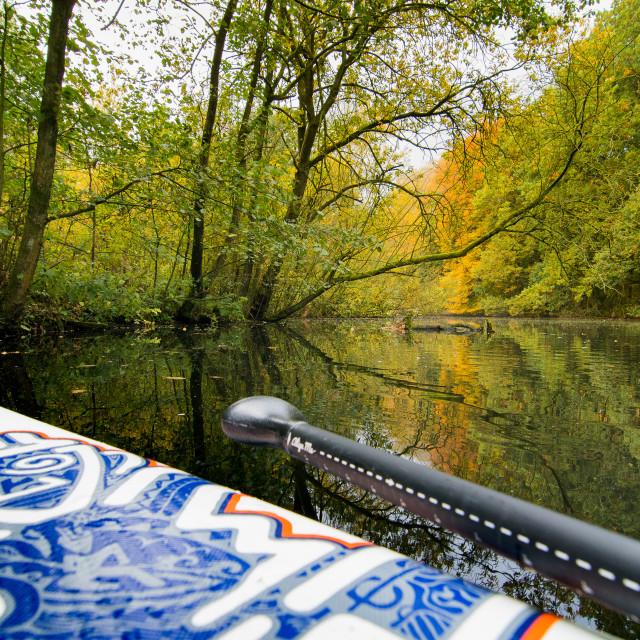 """""""Autumn paddle"""" stock image"""
