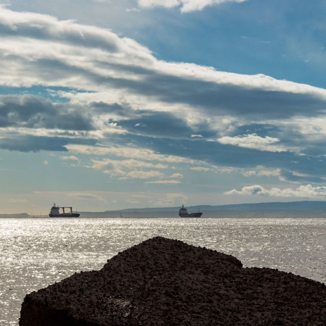 """""""Cargo ships and seagulls"""" stock image"""