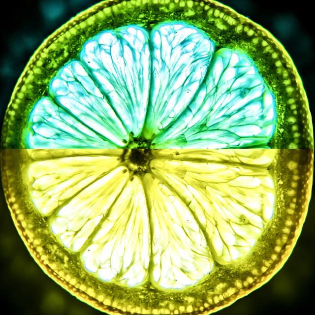 """""""Lemon & Lime"""" stock image"""