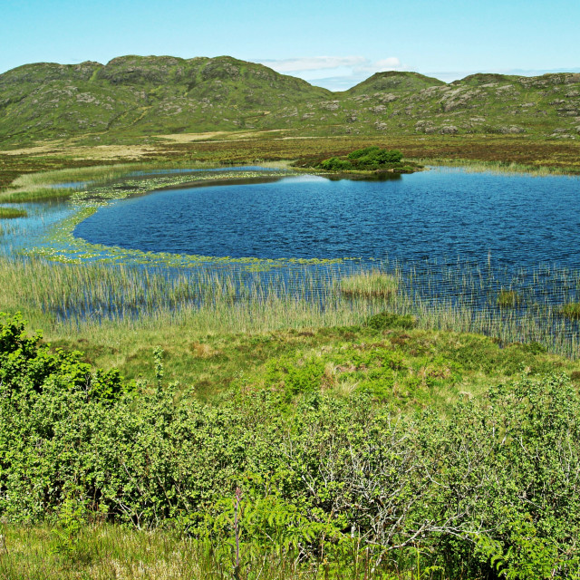 """Mountain pond"" stock image"