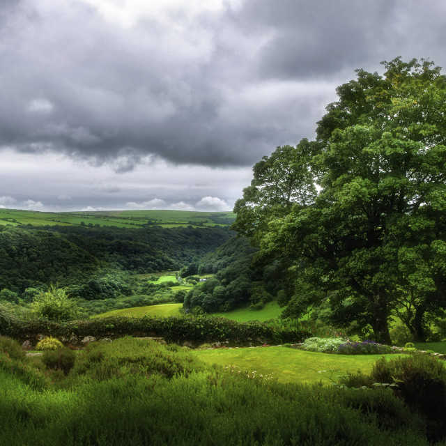 """Looking over the Gwaun Valley"" stock image"