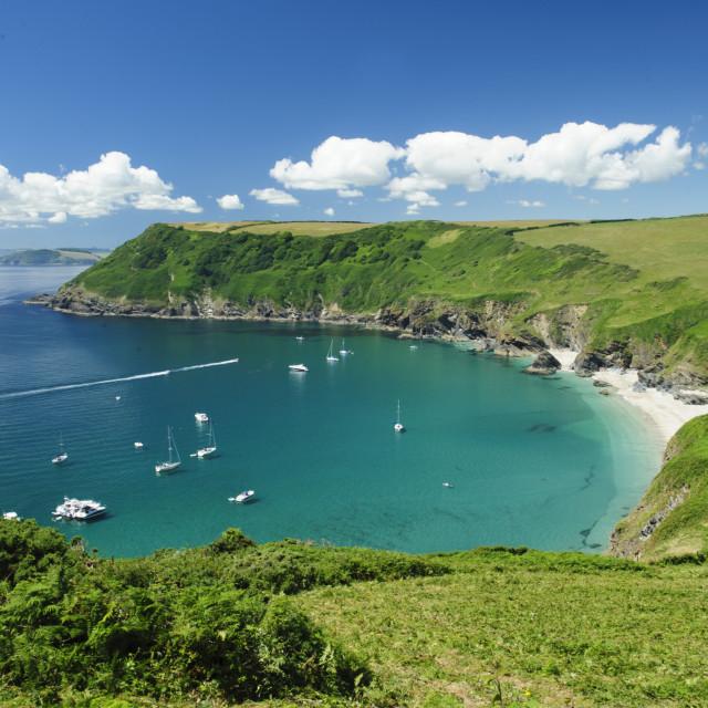 """Lantic Bay on the South Cornish Coast"" stock image"