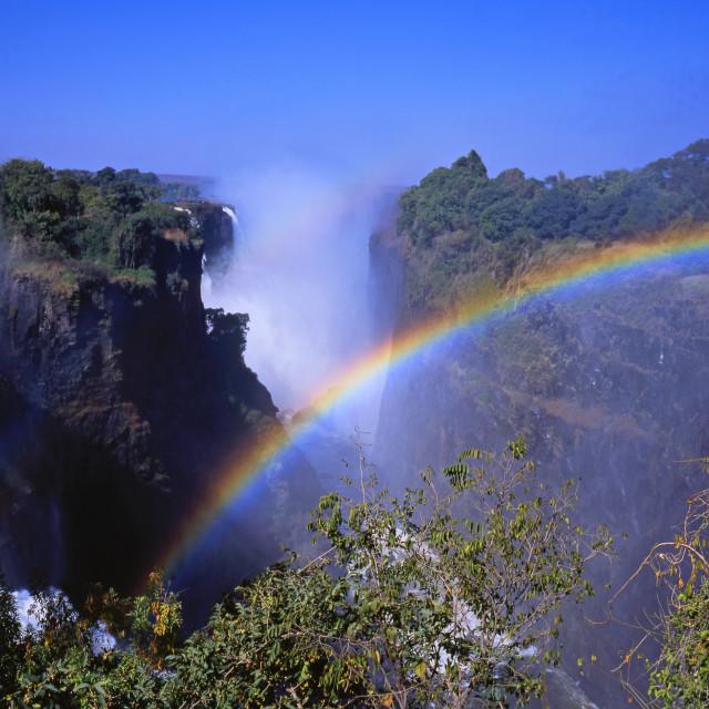 """""""The Victoria Falls"""" stock image"""