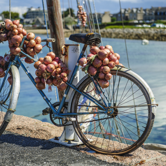 """Johnny Onions Bike"" stock image"