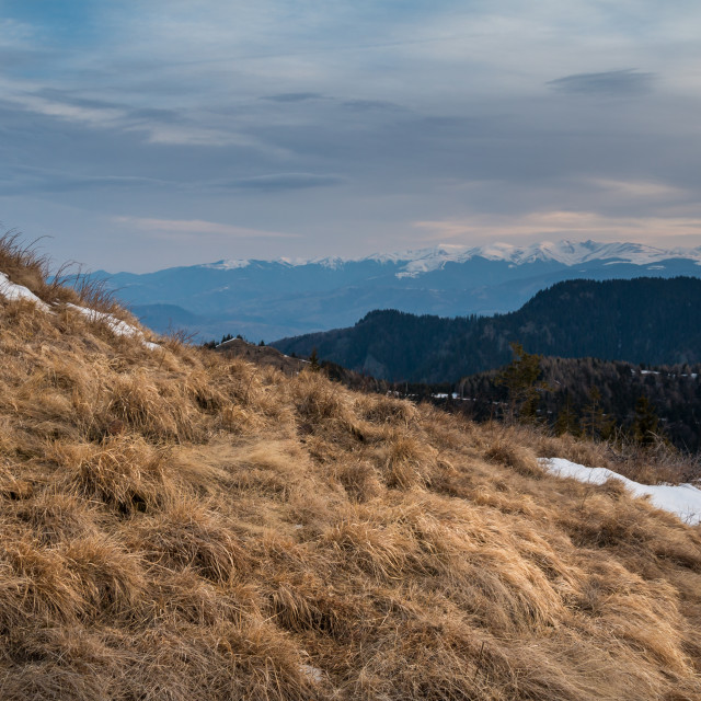 """""""Cozia Mountains in the Morning"""" stock image"""