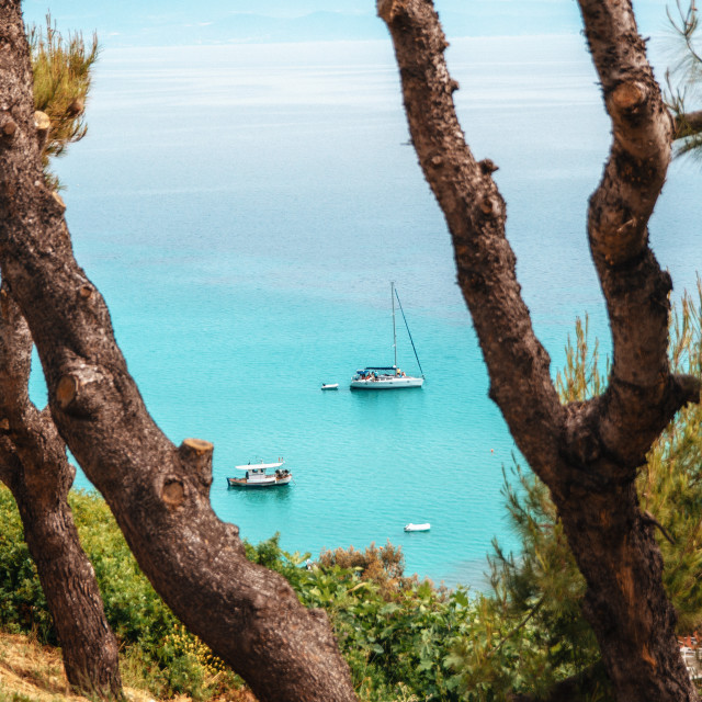 """Yachts lie in a bay with clear transparent cerulean waters. Chalkidiki, Greece. View through the pine trees from above."" stock image"