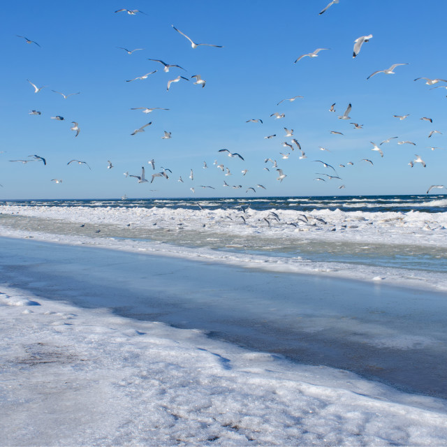 """Cold Baltic Sea"" stock image"