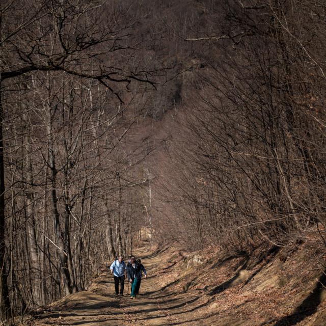 """Mountain Hiking"" stock image"