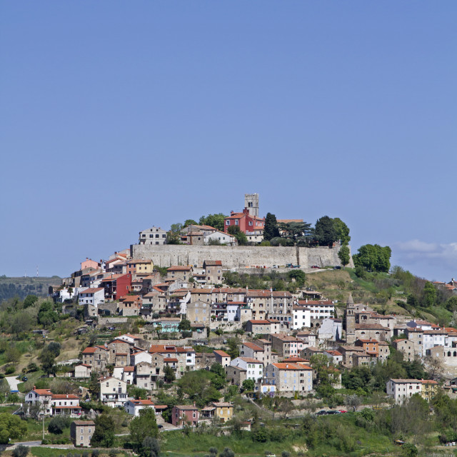 """Motovun in Istria"" stock image"