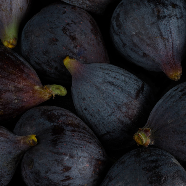 """""""Some figs"""" stock image"""