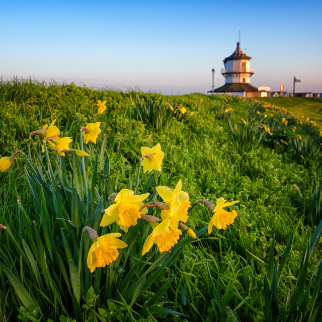 """""""Spring on Harwich Seafront"""" stock image"""