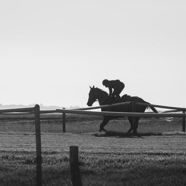 """""""Race Horse Jockey Training Black White"""" stock image"""