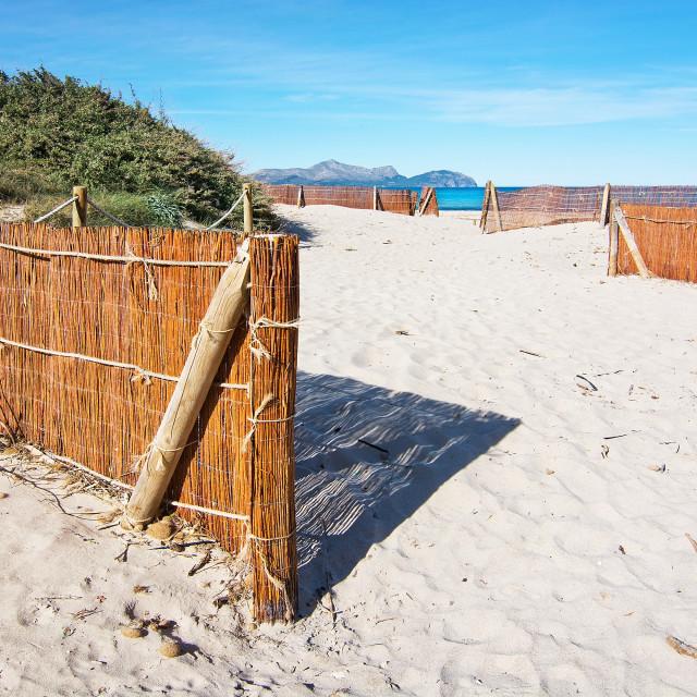 """Empty sandy Mediterranean beach"" stock image"