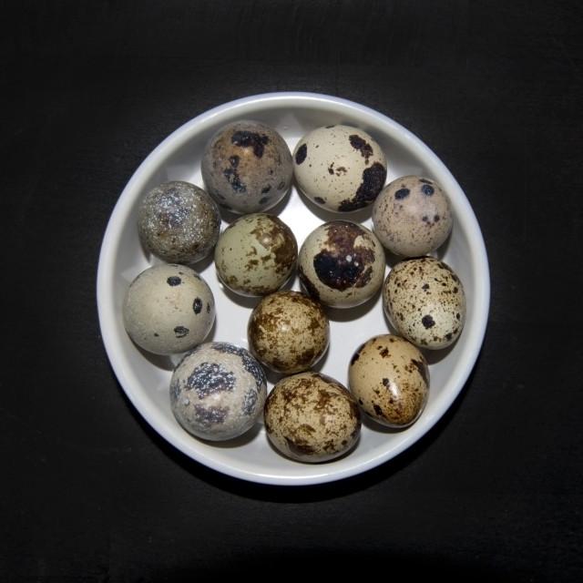 """Twelve small quail eggs"" stock image"