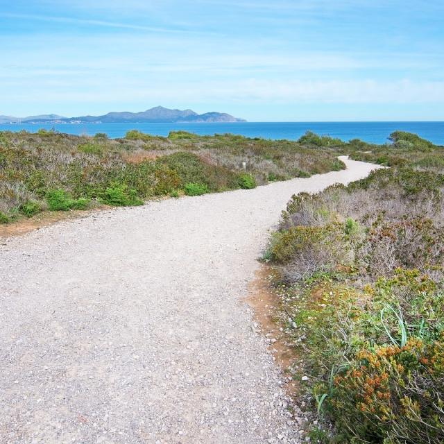 """Gravel road towards the sea"" stock image"