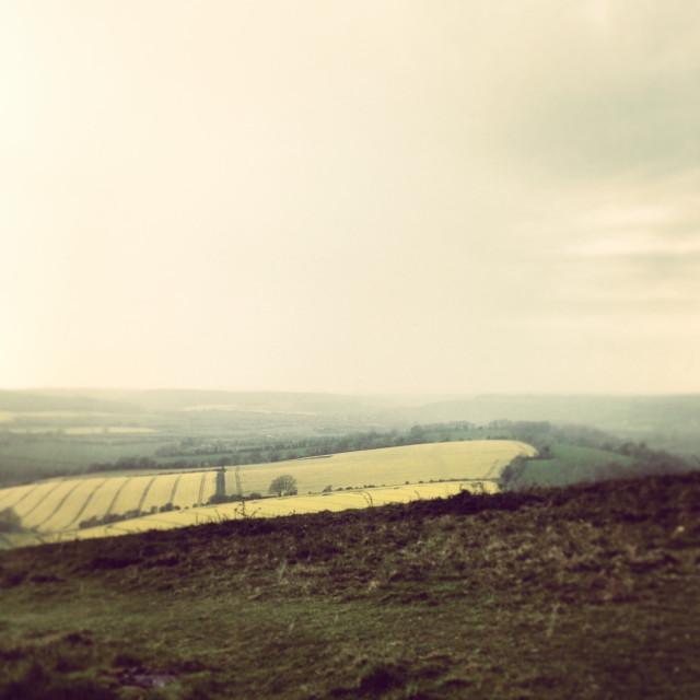 """""""A cloudy, misty view from Butser Hill"""" stock image"""