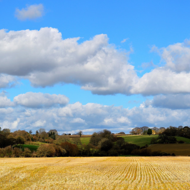 """The Kent countryside."" stock image"