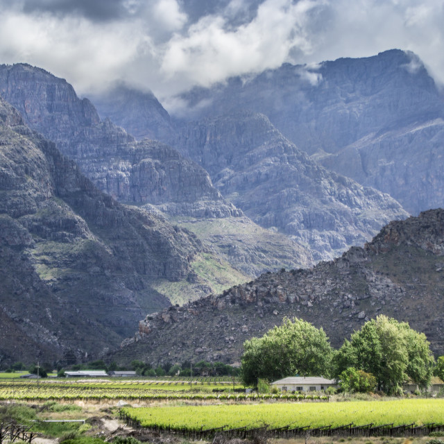 """Landscape of South of Africa"" stock image"