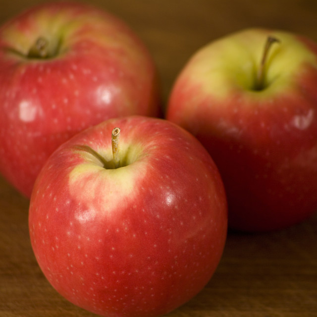 """pink lady apples"" stock image"