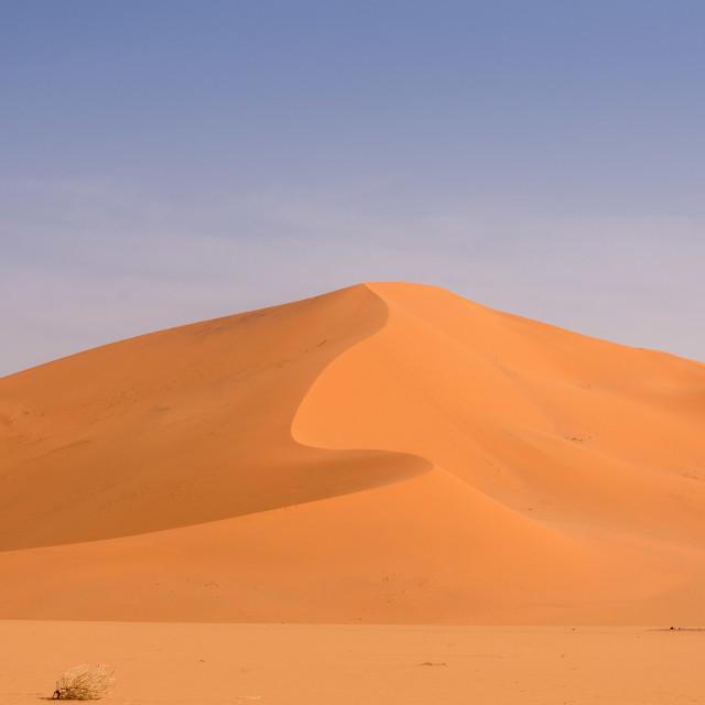 """Sahara Lines"" stock image"
