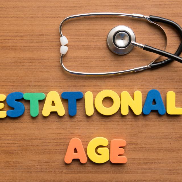 """Gestational age"" stock image"