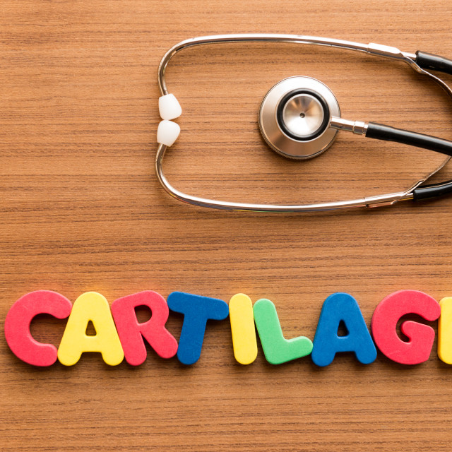 """cartilage colorful word"" stock image"