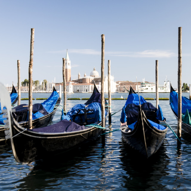 """Gondolas in Venice"" stock image"