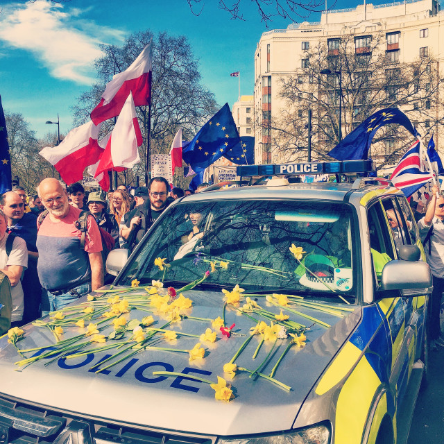 """Flowers on a police car"" stock image"