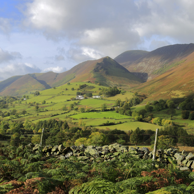 """""""Autumn, November, October, Newlands valley and the Derwent Fells, Cumbria,..."""" stock image"""