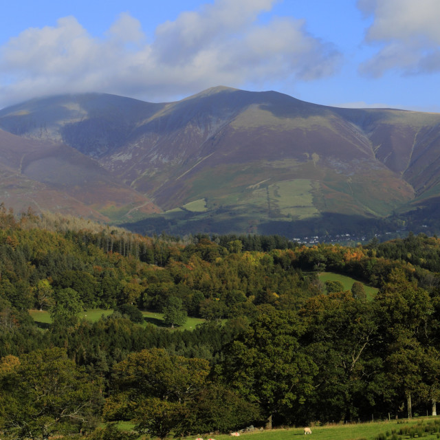 """""""Autumn, November, October, Newlands valley and Skiddaw mountain, Cumbria,..."""" stock image"""