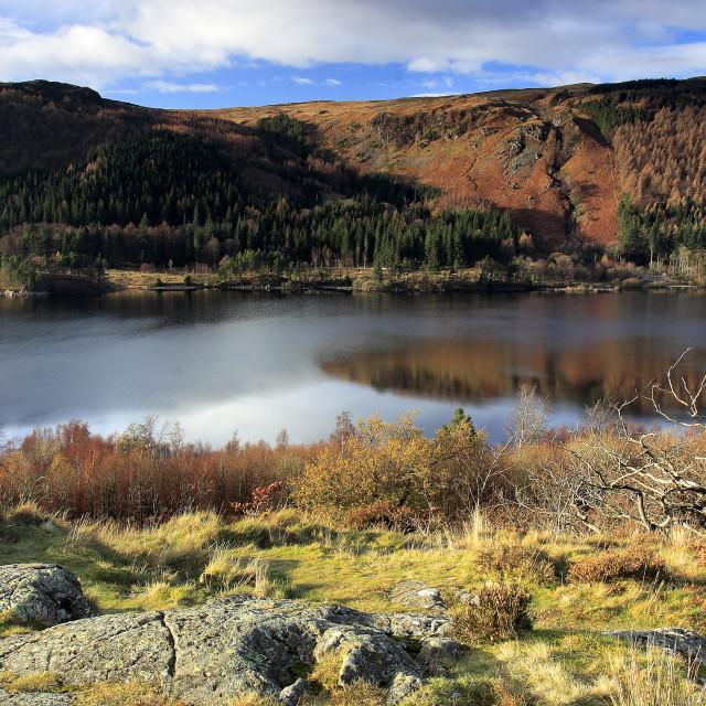 """Autumn, November, October, Thirlmere reservoir, Lake District National Park,..."" stock image"
