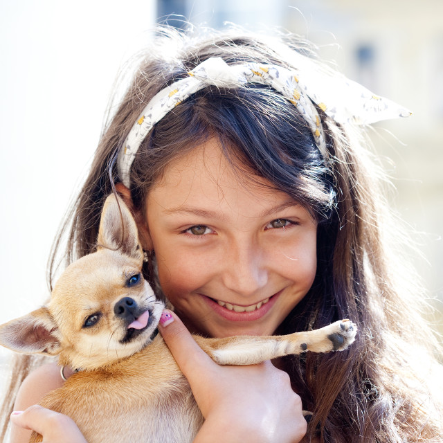 """""""Portrait of a Girl with a Little Dog"""" stock image"""