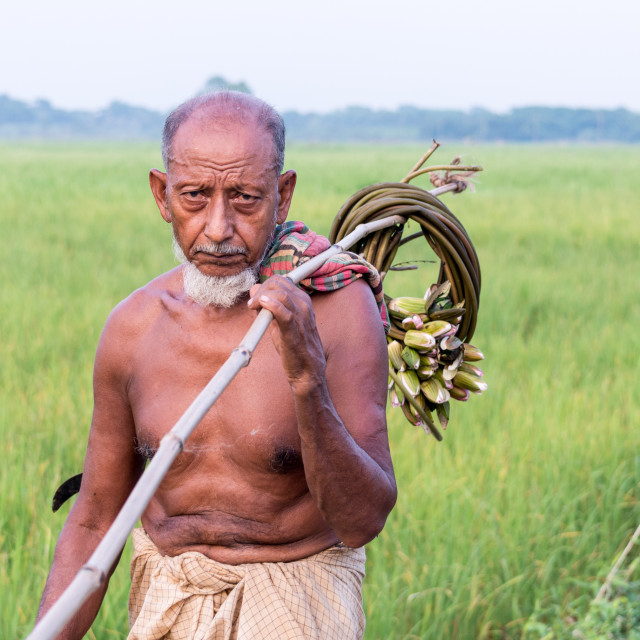 """farmer"" stock image"
