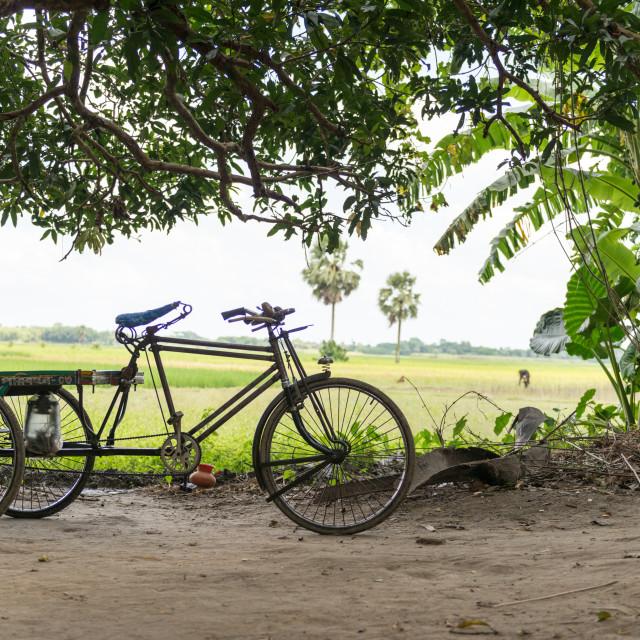 """""""rickshaw van"""" stock image"""